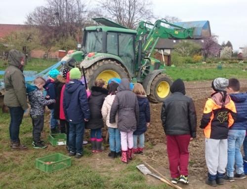 Schulstunde auf dem Bauernhof