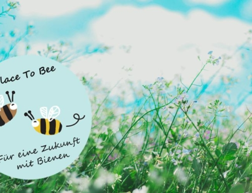 A Place to Bee