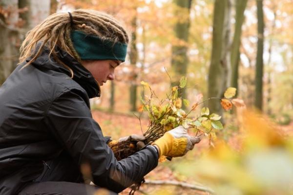 Spielberger pflanzt im Rahmen des Bergwaldprojektes im September 1.000 Bäume im Schwarzwald neu.