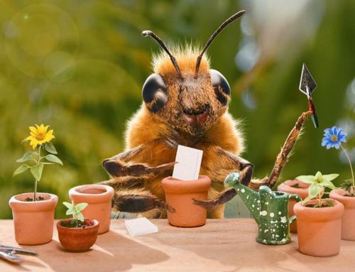 Die Biene – Influencerin und Märchenfigur