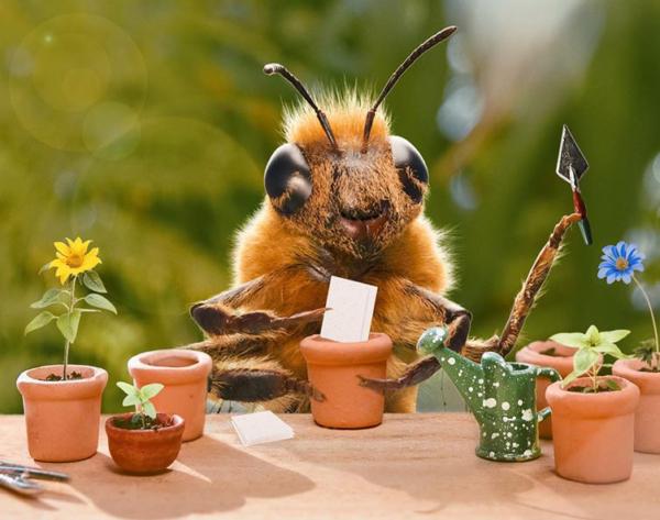 Die Biene als Influencer: Auf Instagram oder im Märchenbuch.